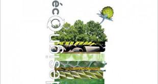 Eco Design Marseille
