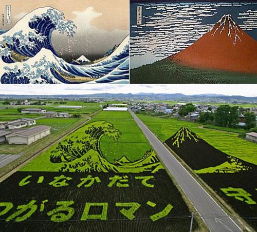 Vague de Kanagawa sur champs de riz