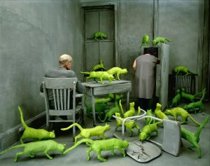 RADIOACTIVE-CATS