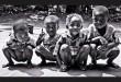 Développement durable - Pure Congo