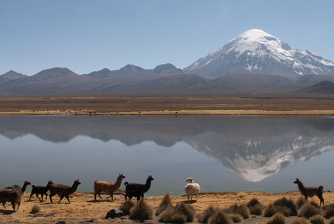 voyage bolivie - lac titicaca