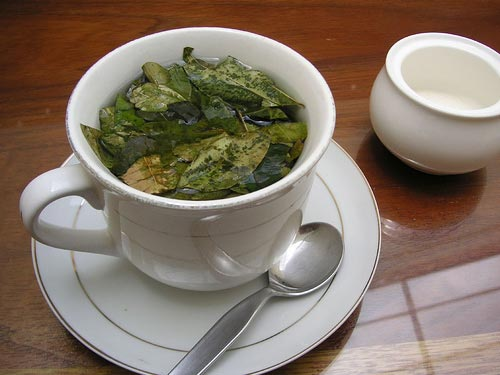 Mate de Coca – Tea – Coca Leaf Peru