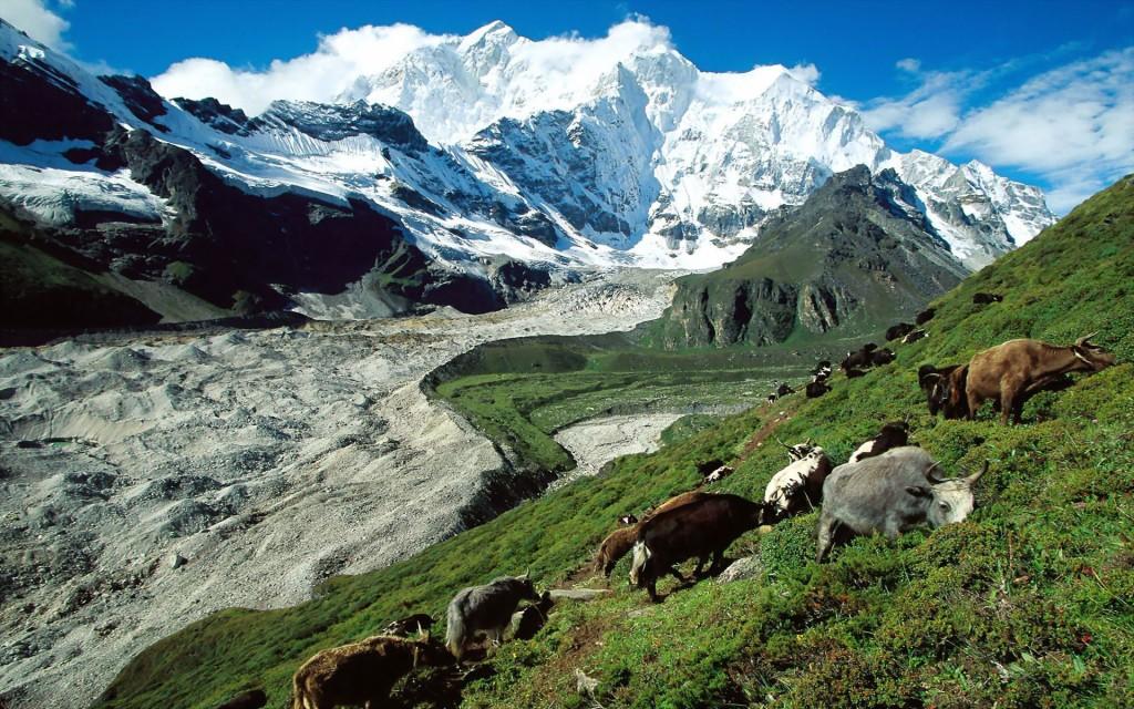 Tibet Paysage