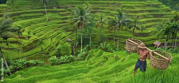 Indonesie Voyage