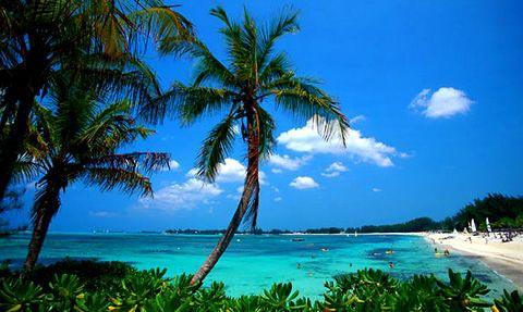 Ile du grand bahama