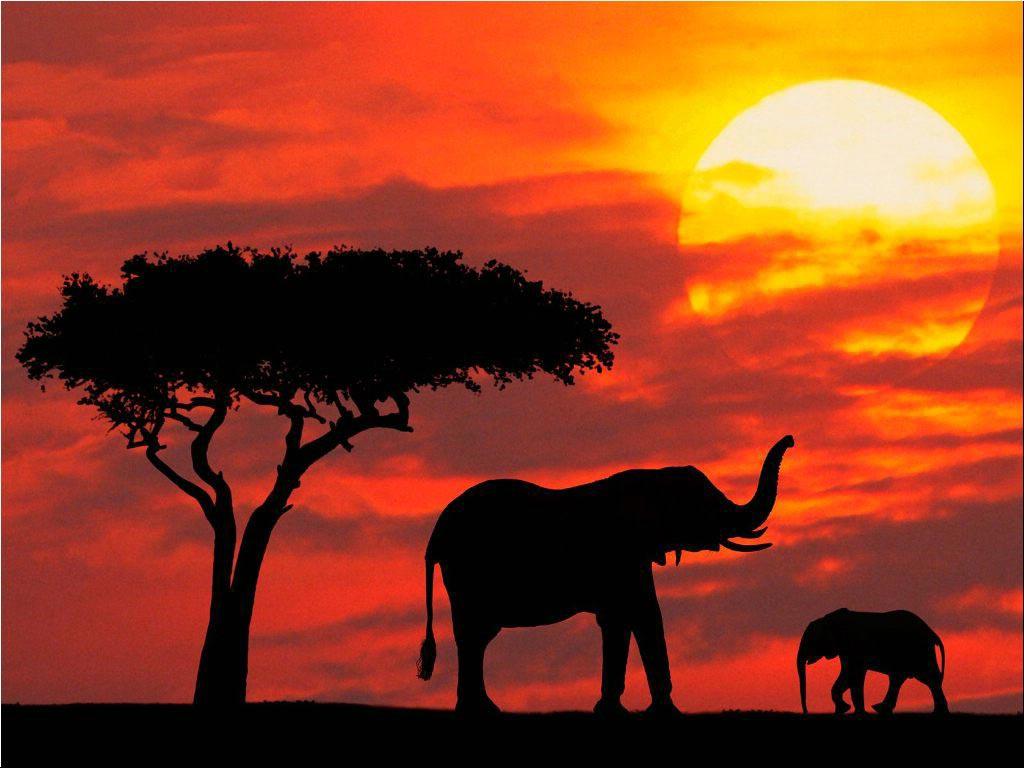Paysage et photo du Kenya