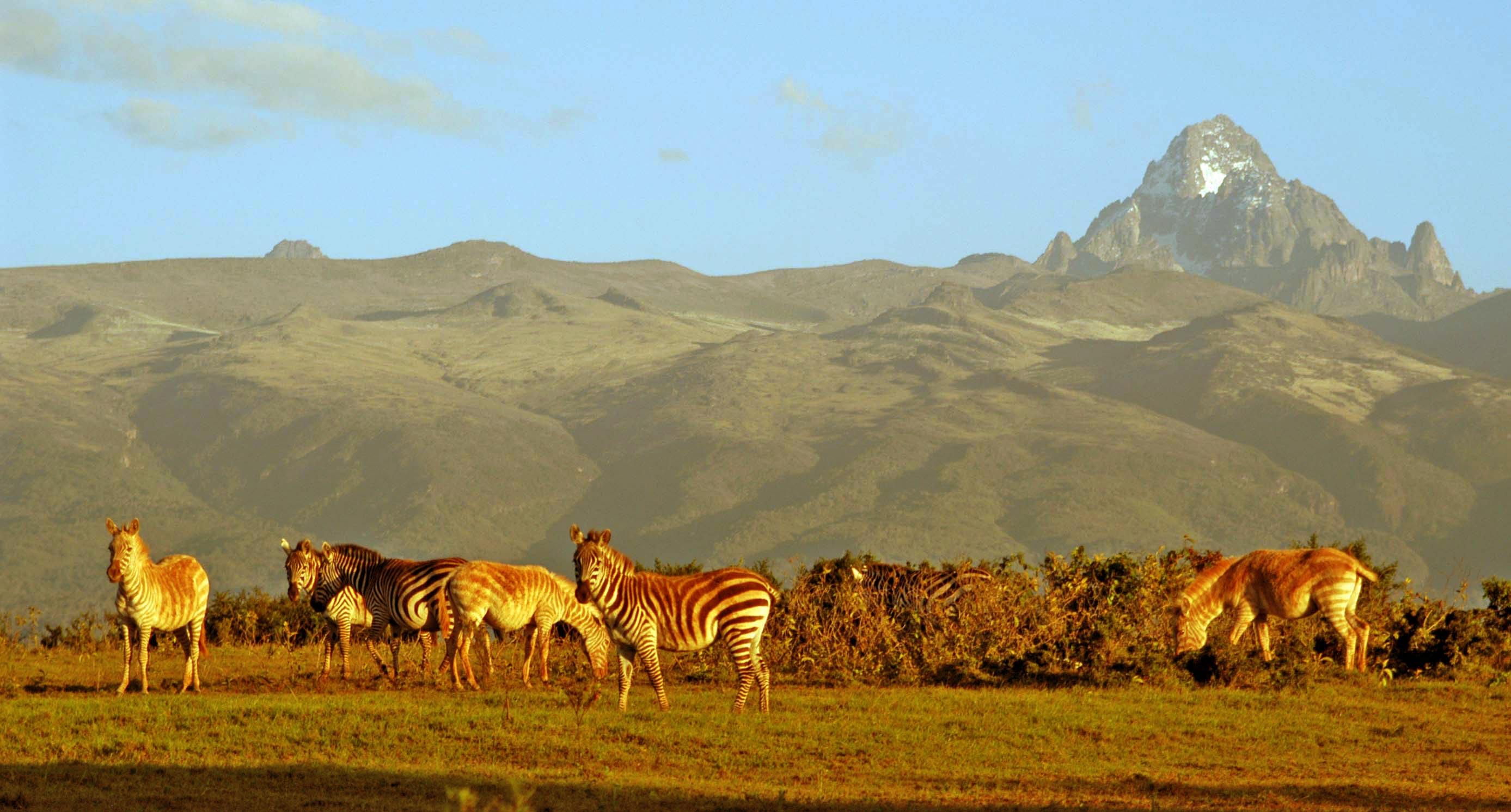 sejour-safari-et-plongee-au-kenya