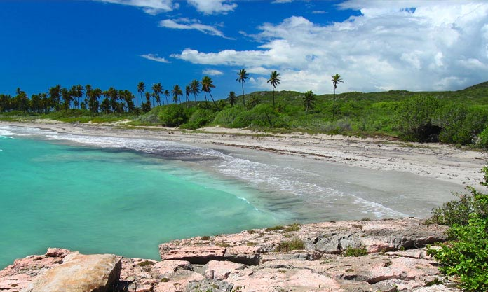 Réserve Guanica – Porto Rico