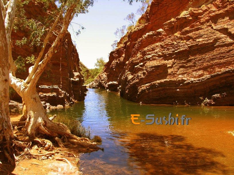 Karijin - Parc national Australien