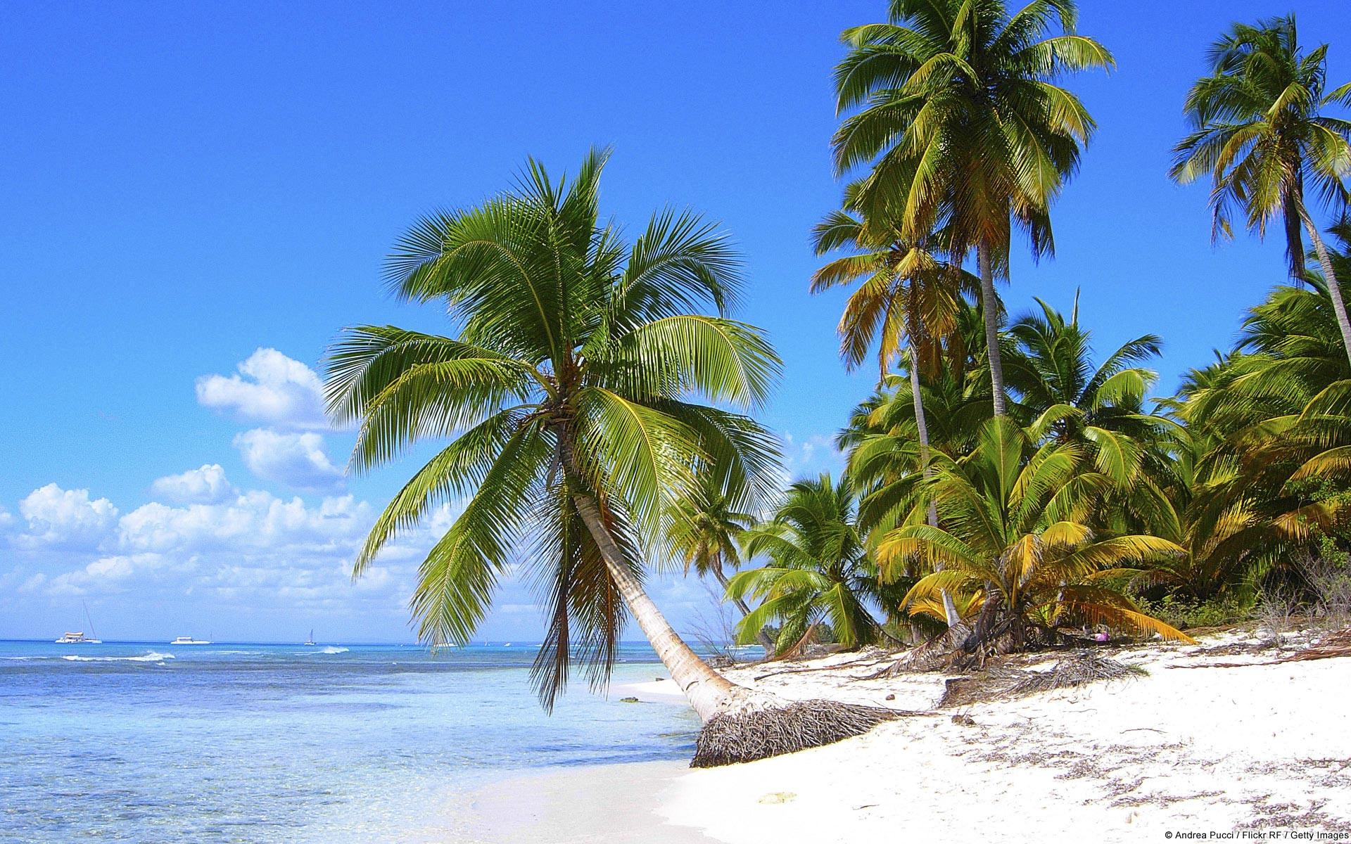 Site de rencontre gratuit en republique dominicaine