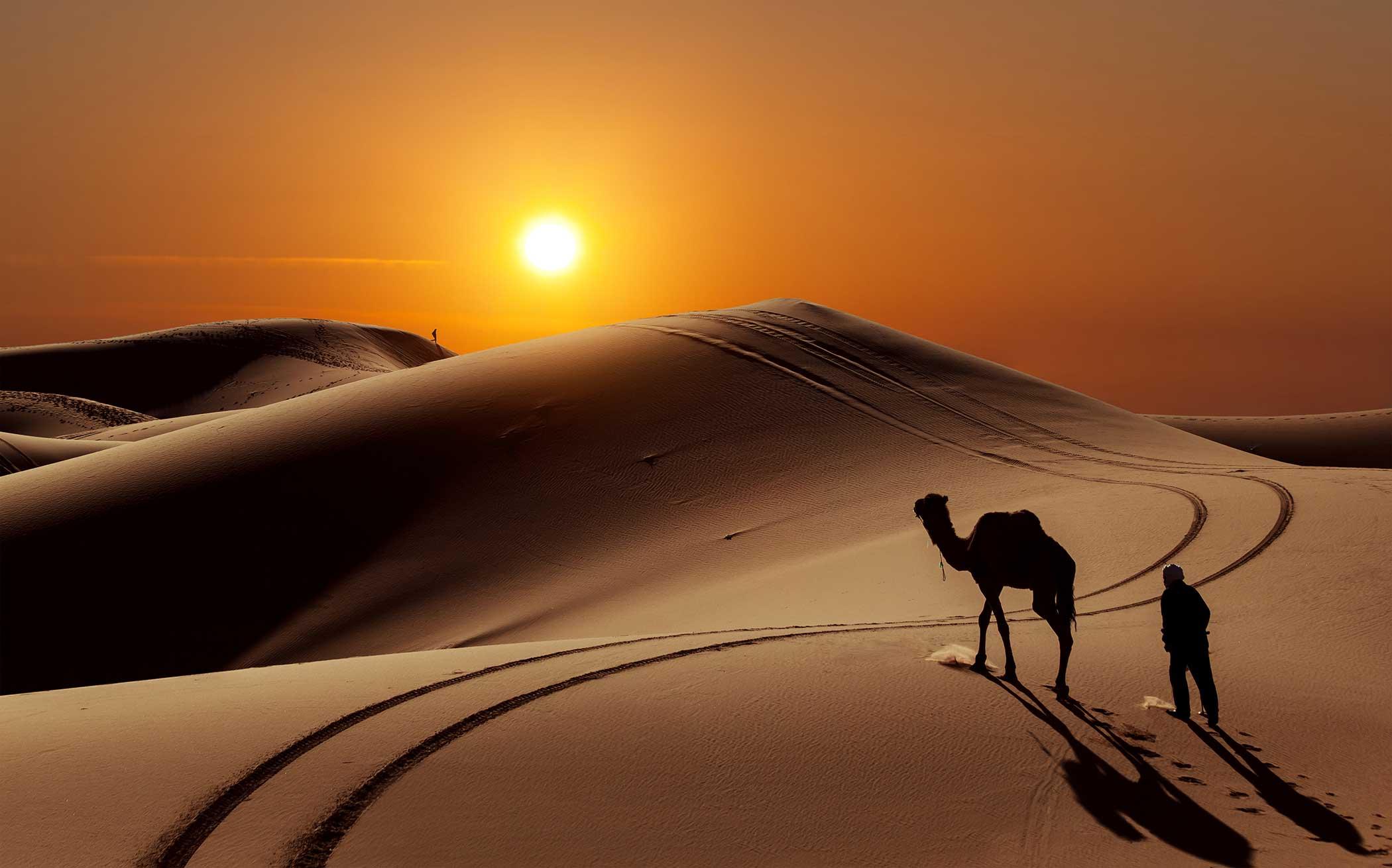 Le voyageur qui termine le Ramadan et se rend à un autre pays dont les habitants sont encore en jeûne