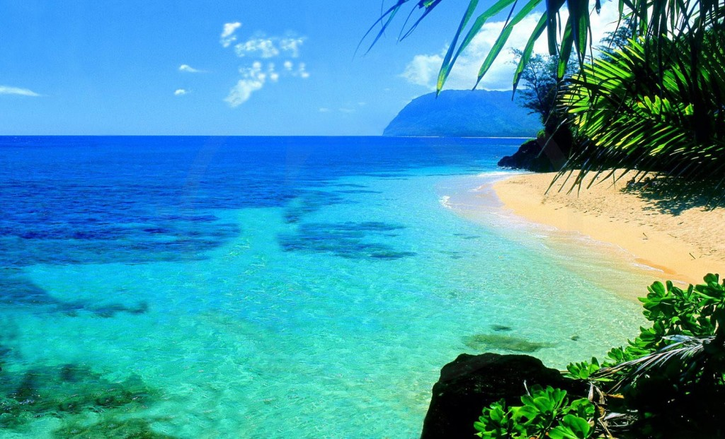Tropical Island Beach Ambience Sound: Arts Et Voyages