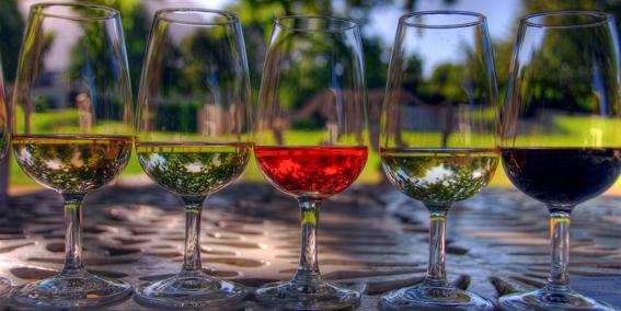 Cepages et Vins Rouges de Caractère