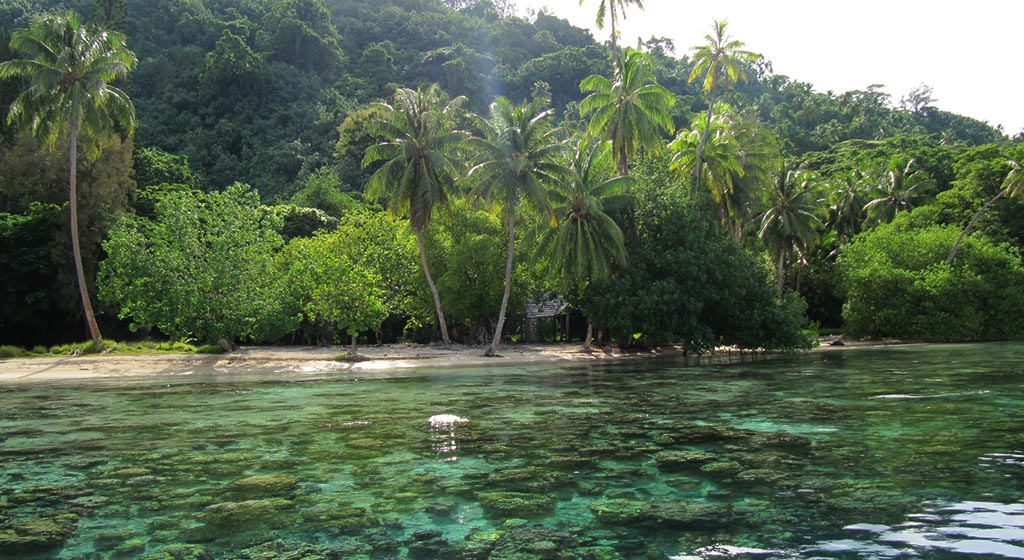 Tahaa- Ile de la Vanille de Martinique