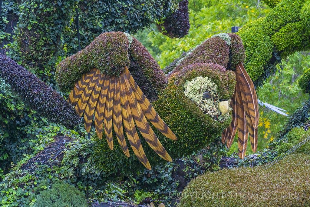 Oiseau - Mosaiculture