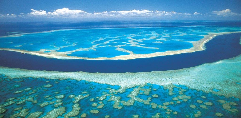 Récif corallien de Polynésie