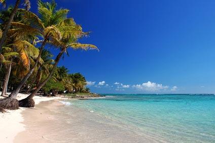 Antilles Paysage
