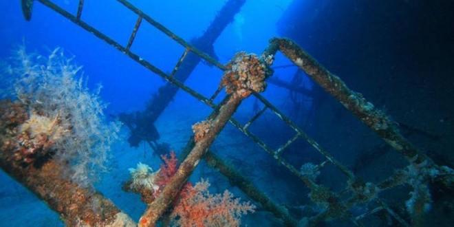 Mer rouge - Croisière plongée