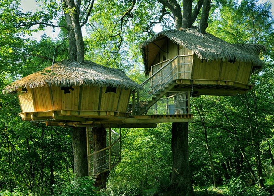 Tourisme - Cabane dans les arbres