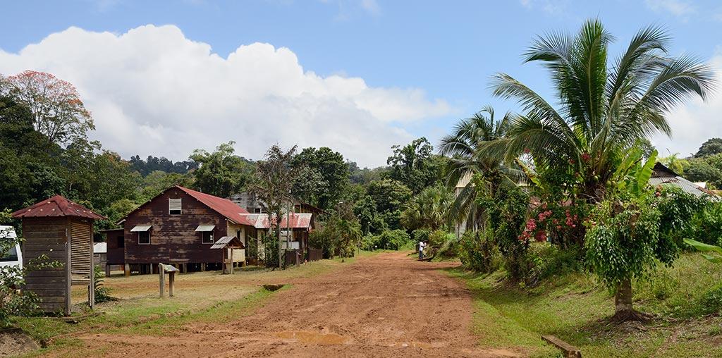 paysage-de-guyane